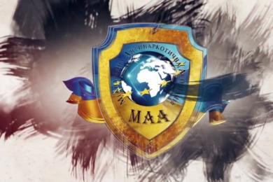 Видео презентация МАА